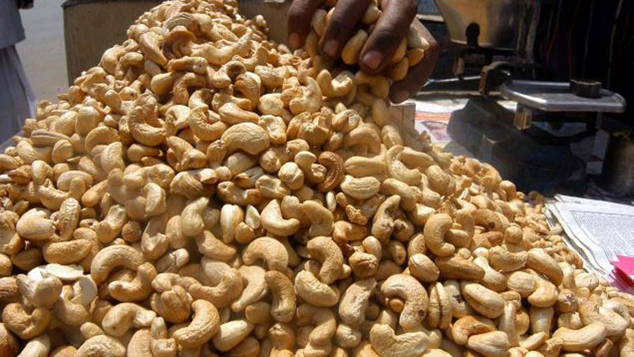 FG to set up cashew processing plants in 4 states — Ogbeh