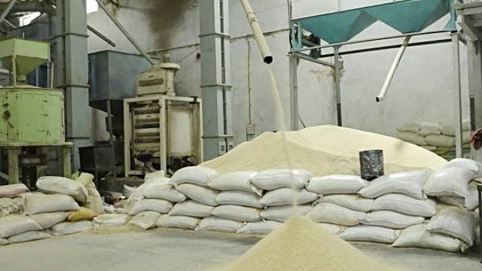 Stallion increases rice production to 1.5m tonnes in Nigeria